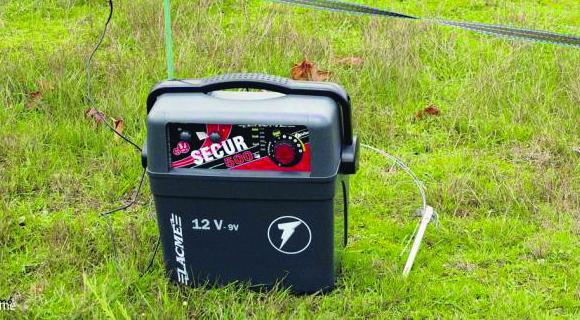 électrificateurs de clôtures anti-sangliers