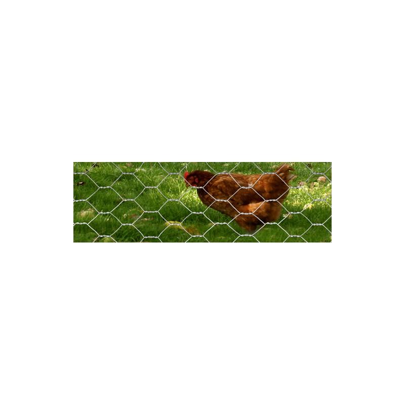 grillage galvanis poules lapins m 25mm 50m. Black Bedroom Furniture Sets. Home Design Ideas