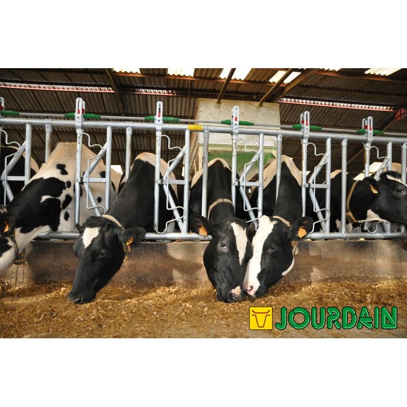 Cornadis Safety IV 6PL / 5 M - JOURDAIN