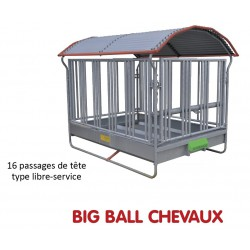 RATELIER BIG BALL SPECIAL CHEVAUX - JOURDAIN