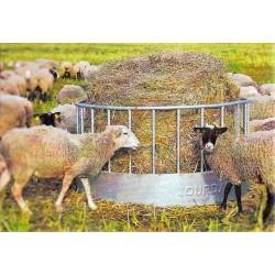 RATELIER Rond Spécial Moutons - JOURDAIN