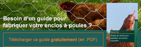 conseils pour fabriquer un enclos à poules