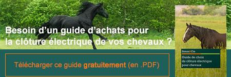 Nos Conseils et produits pour la clôture électrique de vos chevaux